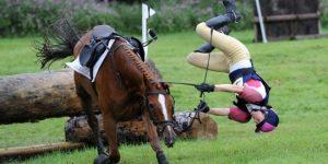 val van paard gratisletselhulp.nl